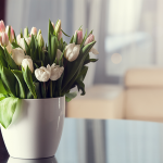 3 Ways To Get Your Home Ready For Spring